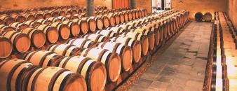 De wijnkelder van Wijnkasteel Genoels-Elderen