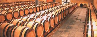 La cave de Wijnkasteel Genoels-Elderen