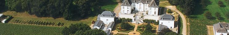 Het kasteel van wijndomein van Wijnkasteel Genoels-Elderen